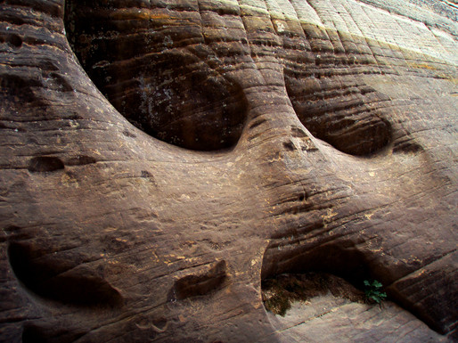 Rock Frowning in Zion
