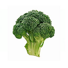 Broccoli_01.png