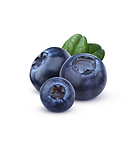 Blue_Berry.png