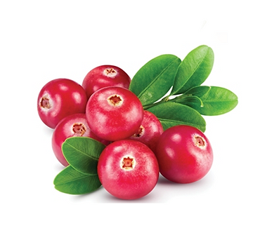 Cranberry_Logo.png