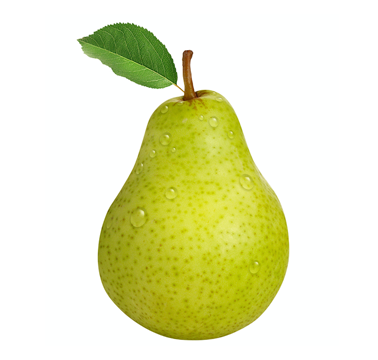 Pear_1.png