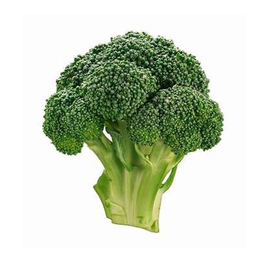broccoli_1.png