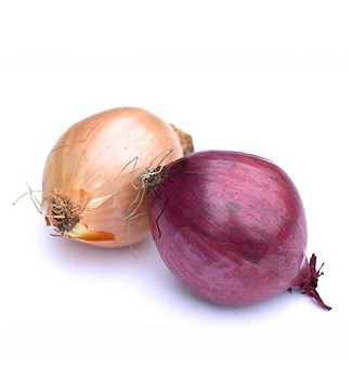 Oonion_1.png