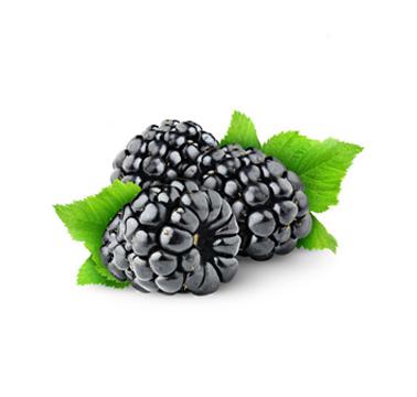 Blackberrt.png