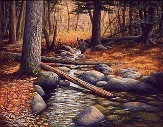 Pine River, Below Lake Lenore