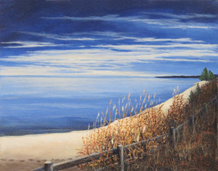 Serene Shoreline