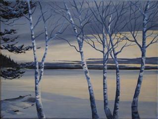 Pine Bay