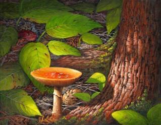 Toadstool & Tree