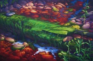 Pebbled Brook, Oliver Bay, MI
