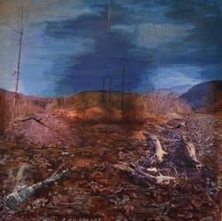 Marissa Angel, Fractured Landscape