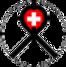 vrgs_logo.png