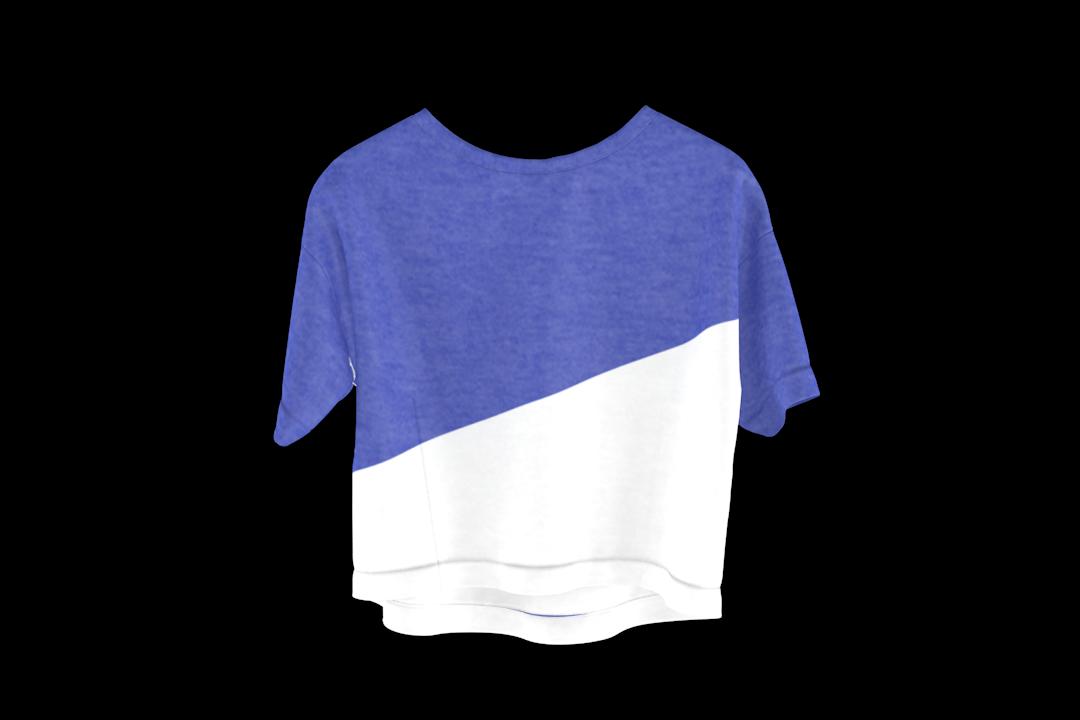 t-diagonal-blue-shirt-transp-2.png