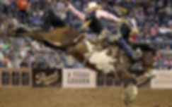 Pearl Rodeo Tiled Ads