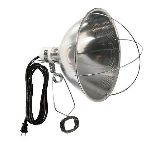 Brooder Heat Lamp with 10 inch Shade and Clamp