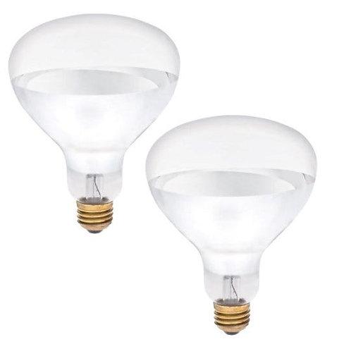Brooder 250 Watt Heat Lamp Bulb - 2 Pack