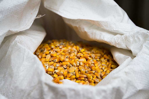 Campbell's Shelled Corn