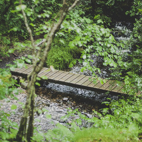 stream-bridge_orig.jpg