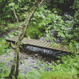 stream-bridge_orig.jpg