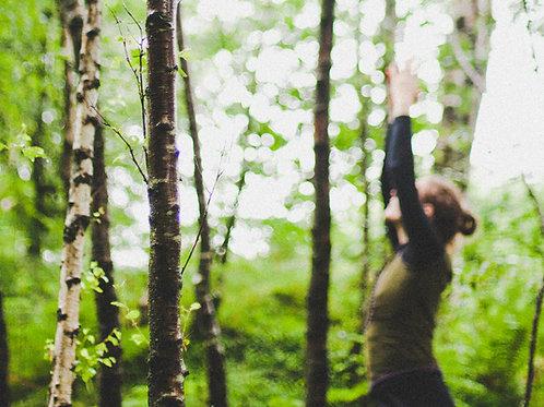 Yoga Medicine Beltane Retreat 7th - 10th May (3 Nights/Weekend)