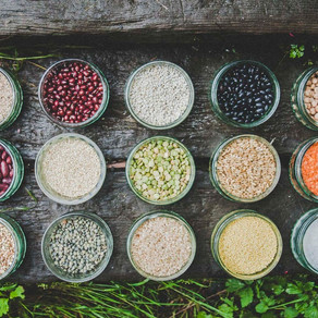 The Journey of a Holistic Cook Book: Conscious Cookery