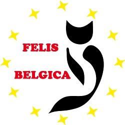 FELIS BELGICA - Nuovo Indirizzo e Conto Corrente