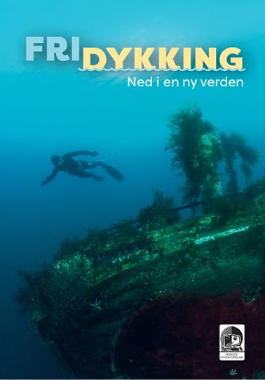 Skjermbilde 2019-03-12 kl. 20.10.05.png