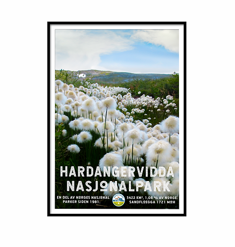 HARDANGERVIDDA NASJONALPARK IV