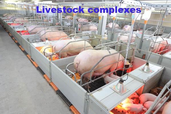Livestock_complexes