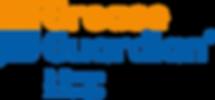 GG-DX logo.png