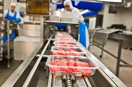 Food production.jpg