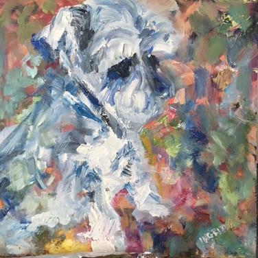 Ned-Dogs of Dorset