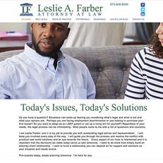 Leslie Farber Law