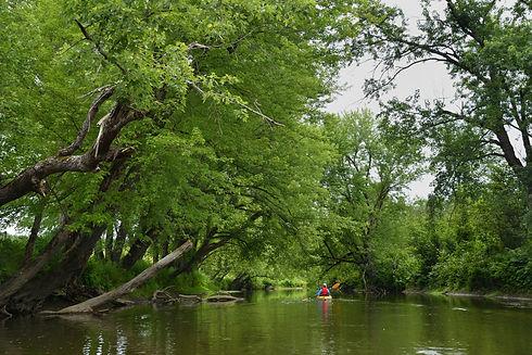 Kayak sur la Missisquoi Nord 2 (1).jpg