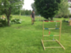Ladder ball paysage.JPG