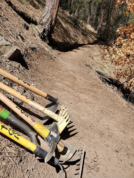 Trail Tools on a trail. Six Shooter Trail work.
