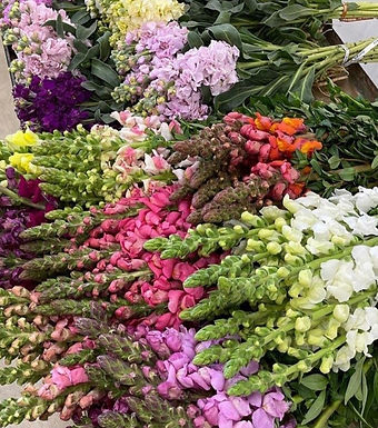 April Showers Bring Mother's Day Flowers