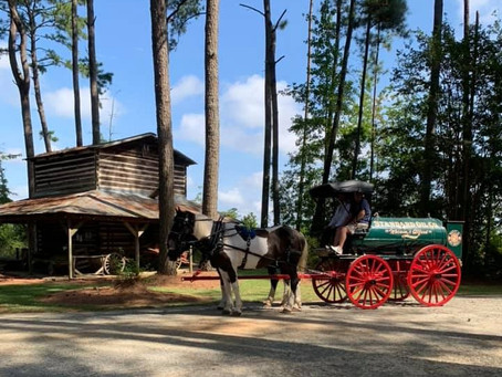 Watson & Alford Oil Wagon: A Piece of Kenly History