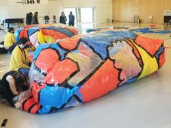 Mi ballena viajera | 2021