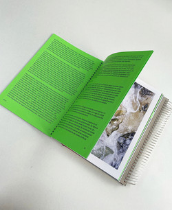 Catálogo de Pasados-presentes para un contexto afectivo