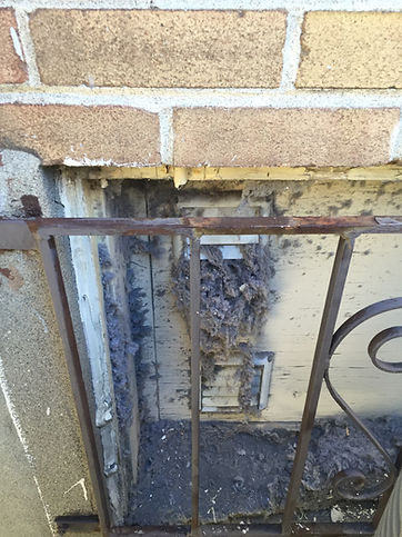 exterior dryer duct cleaning.JPG