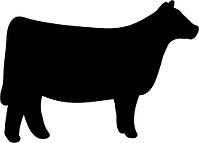 heifer.png