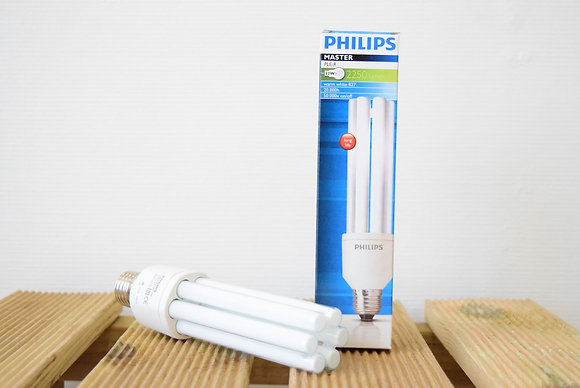 Ampoule horticole Philips - basse consommation
