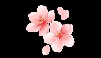 stl_i_cherry_blossom_petals.png