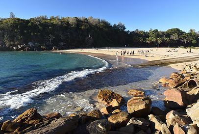 Shelly Beach and Cabbage Tree Bay Aquati