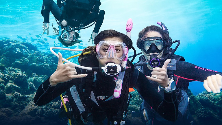 E-Learning PADI Open Water Course