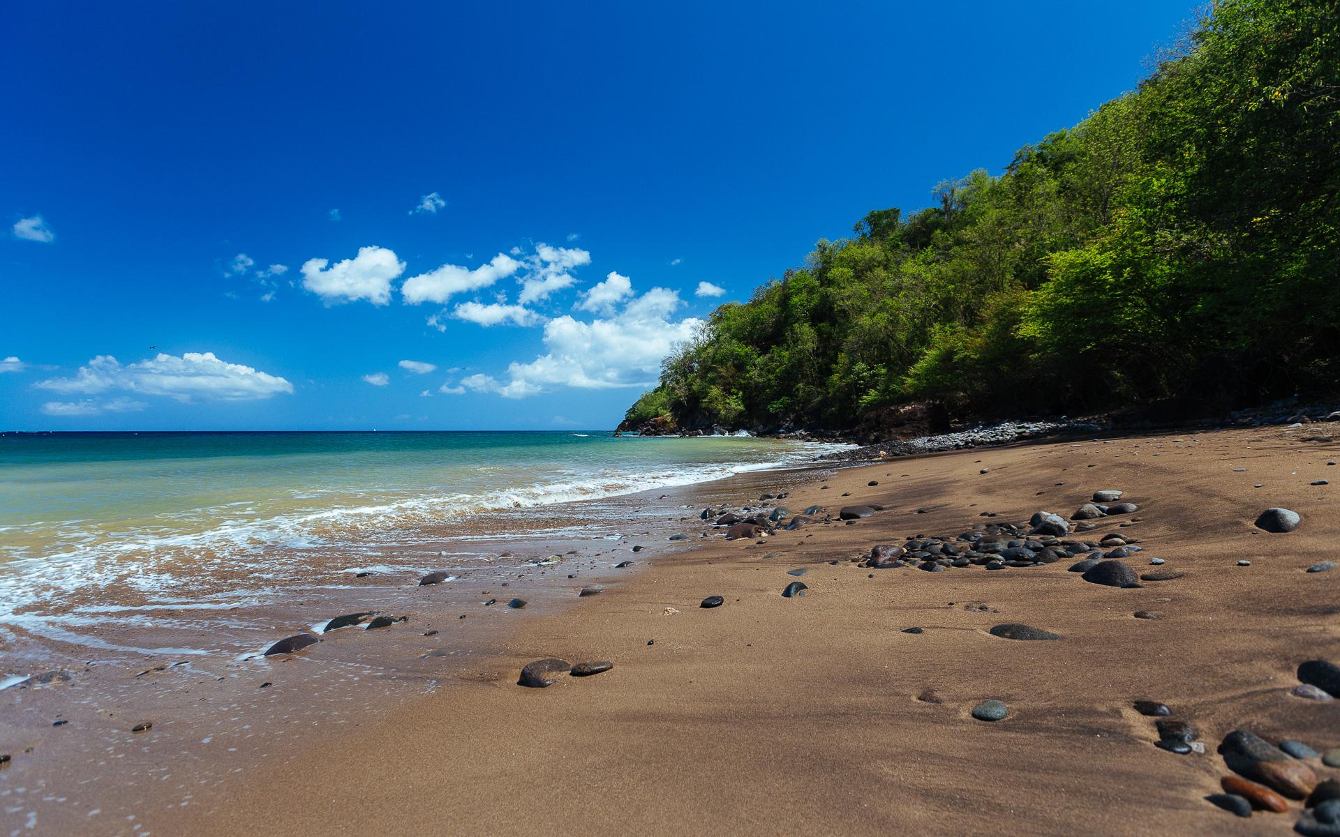 Plage Caraïbe Pointe Noire