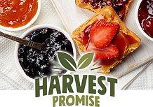 Harvest Promise.jpg