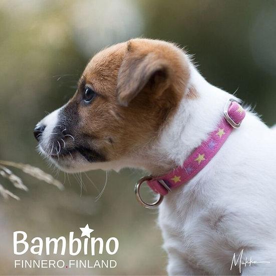 FinNero Bambino Collar - Girly Pink