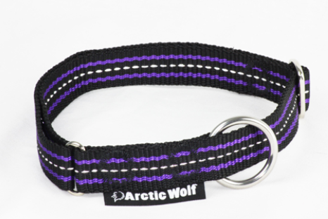 Arctic Wolf Team Collar