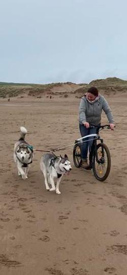 Me Dogs Beach (Copy)